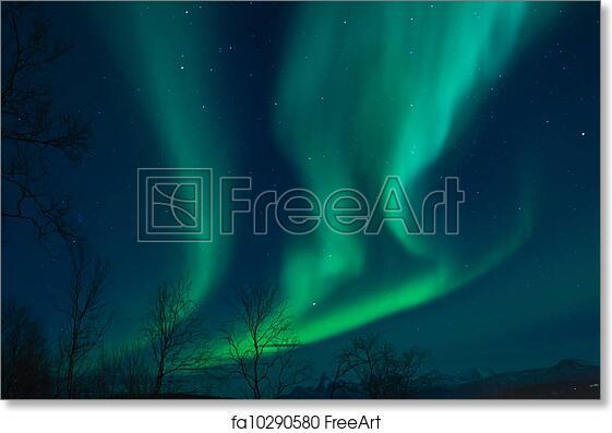 free art print of aurora borealis northern lights a high
