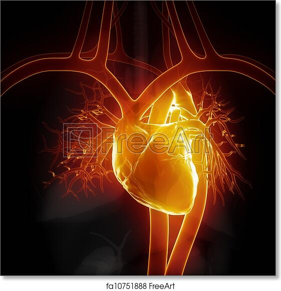 Free art print of glowing heart with internal organs freeart free art print of glowing heart with internal organs ccuart Gallery