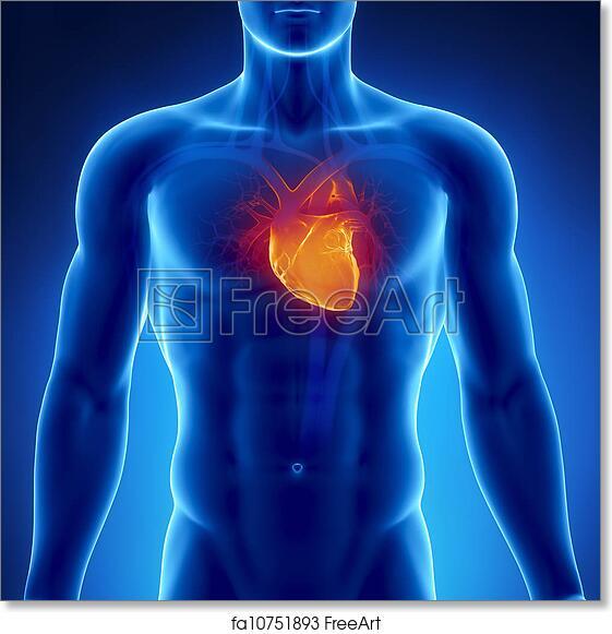 Free Art Print Of Glowing Heart In Male Chest Freeart Fa10751893