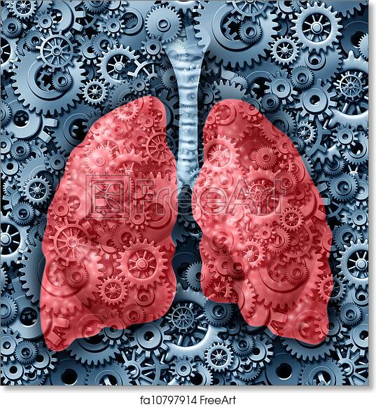 Free art print of Human lungs Function. Human lungs health medical ...