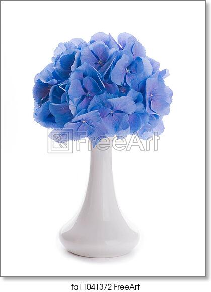 Free Art Print Of Flowers In A Bouquet Blue Hydrangeas And White