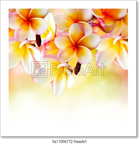 Free Tahitian Art Prints and Wall Art | FreeArt