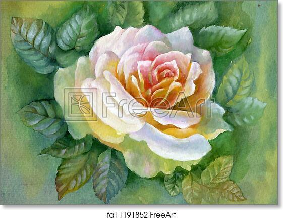 Free Art Print Of Watercolor Flower Rose Beautiful Pink Rose Flower