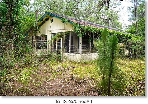 Free art print of Old florida abandoned house