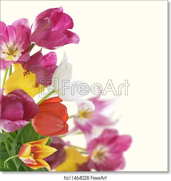 Free art print of Flowers Border. Anniversary Card Design | FreeArt ...