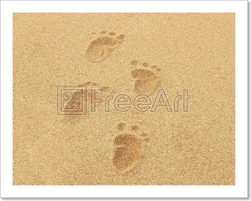Amazing Footprints In The Sand Wall Art Illustration - All About ...