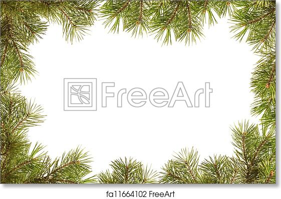 free art print of border frame from christmas tree branches border