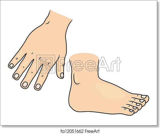 Free art print of Hand and Foot Body Parts. Illustration of Hand and ...