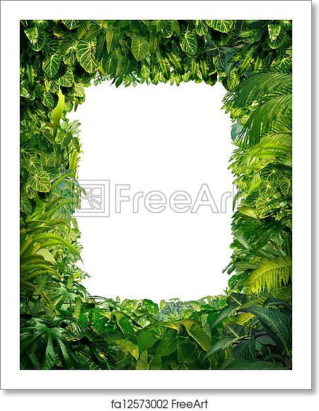 Free Art Print Of Jungle Border Jungle Border Blank Frame