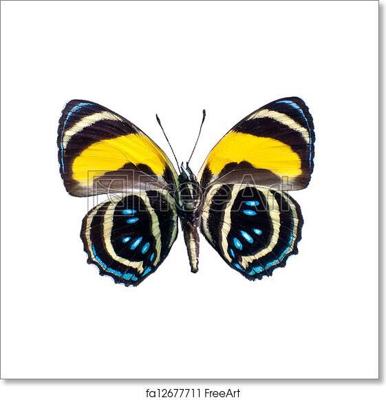 Download 4700 Koleksi Background Art Definition Gratis Terbaru