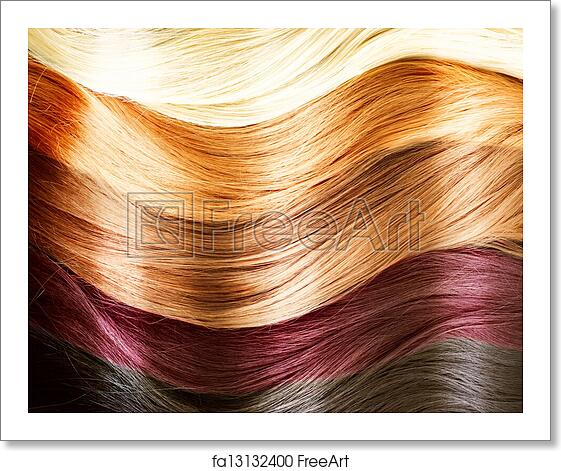 Free art print of Hair Colors Palette. Hair Texture ...