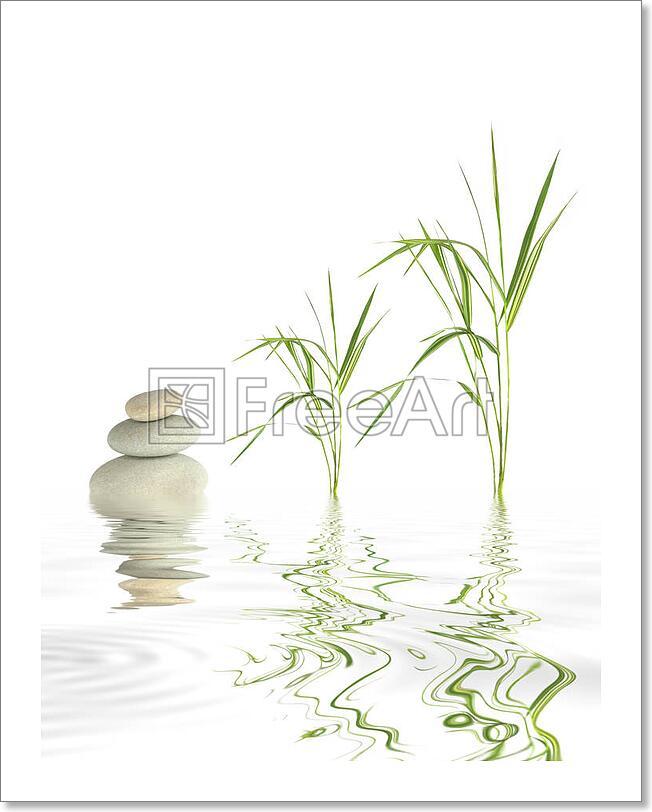 Zen Stones And Bamboo Grass Art Print Home Decor Wall Art Poster