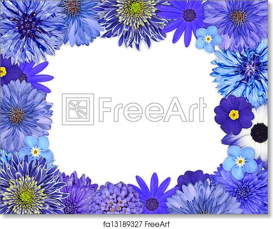 Free art print of flower frame with blue purple flowers on white free art print of flower frame with blue purple flowers on white mightylinksfo