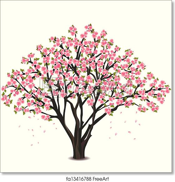 Free Art Print Of Japanese Cherry Tree Blossom Over White
