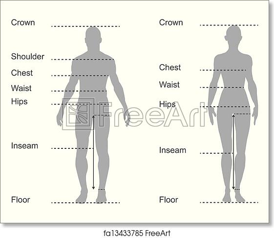 It's just an image of Printable Body Measurement Chart regarding sewing
