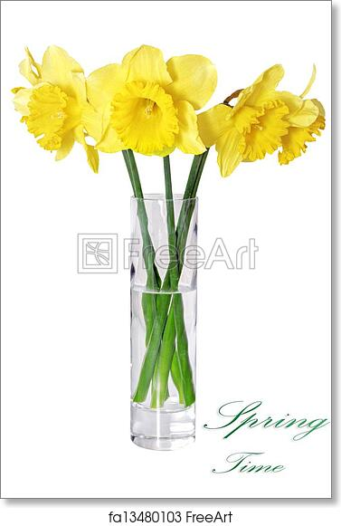 Free Art Print Of Beautiful Spring Flowers In Vase Yellow Narcissus