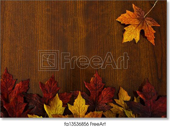 Free art print of autumn changing leaves nature and thanksgiving free art print of autumn changing leaves nature and thanksgiving backgrounds voltagebd Gallery
