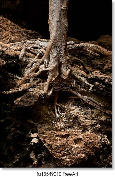 Fantasy Art Tree Growing In A Cavern