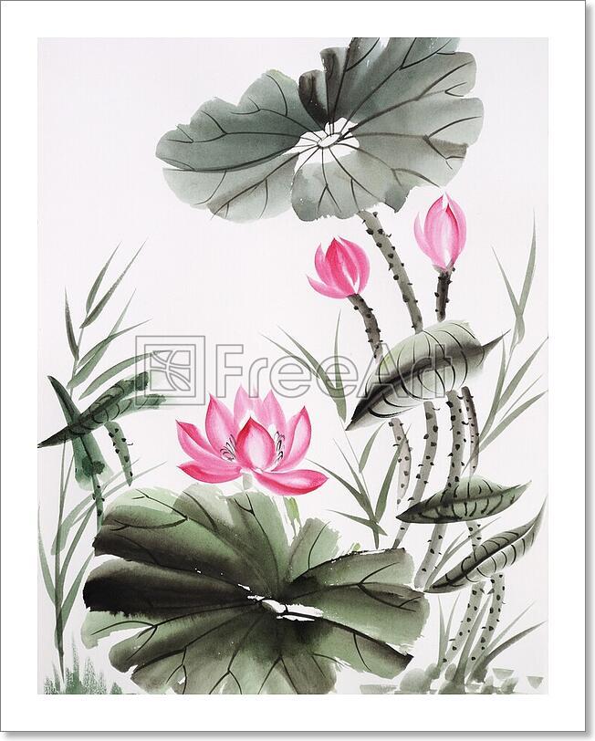 Watercolor Painting Of Lotus Flower Art Print Home Decor ...