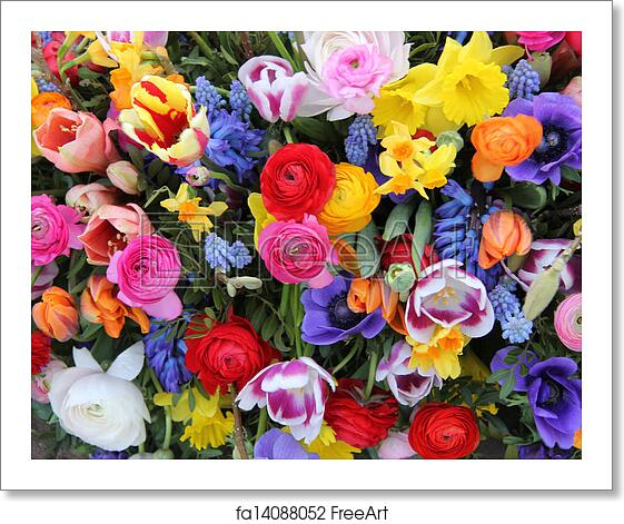 Free Art Print Of Spring Flowers In Bright Colors Colorful Mixed