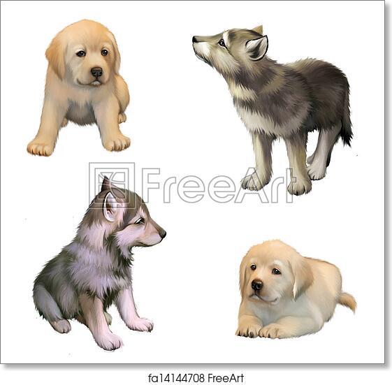 Free Art Print Of Cute Little Puppies Of Yellow Labrador Retriever