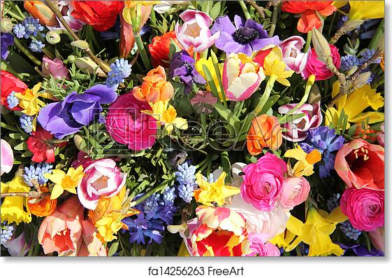 Free Art Print Of Bright Colored Spring Flower Bouquet Bright