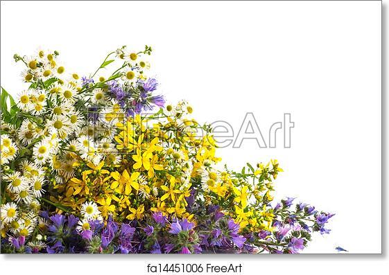 Free Art Print Of Bouquet Of Summer Flowers Beautiful Bouquet Of