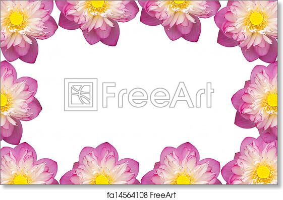 Free art print of Pink Beautiful lotus flower. Buddhist religious symbol. | FreeArt | fa14564108