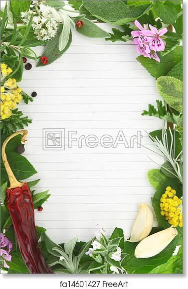 Free art print of Herbs and spices frame on blank recipe card ...