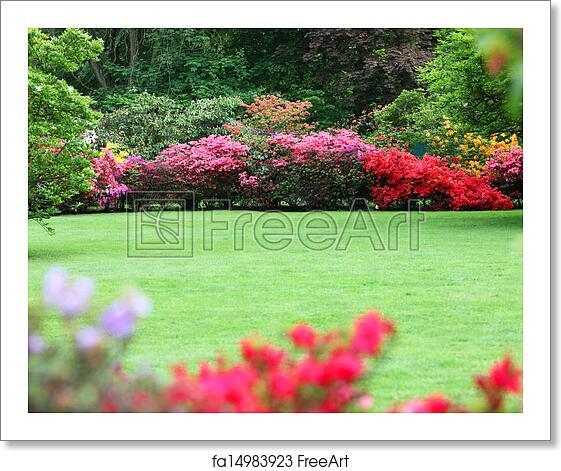 Free Art Print Of Beautiful Garden With Flowering Shrubs