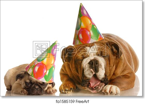 Free Art Print Of Funny Birthday Dogs