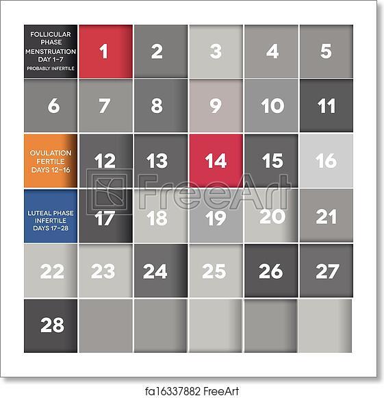 Menstrual Cycle Calendar.Free Art Print Of Menstrual Calendar