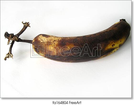 Rotten Banana Pictures