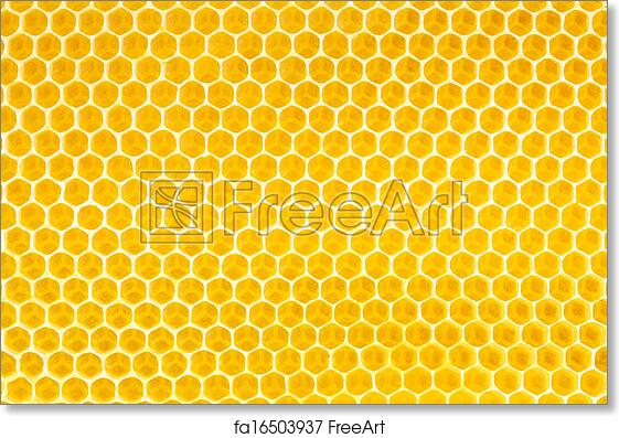 Free art print of honey in honeycomb background freeart fa16503937 free art print of honey in honeycomb background voltagebd Image collections
