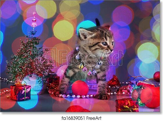 Christmas Stuff.Free Art Print Of Small Kitten Among Christmas Stuff