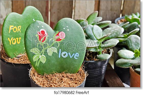 Free Art Print Of Heart Shaped Plant Kerrii Hoya Heart Shaped