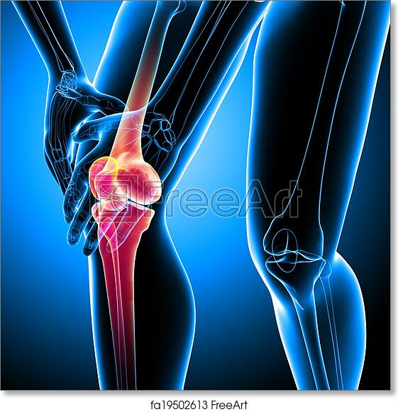 Free art print of Human knee pain on blue. 3d rendered Illustration ...