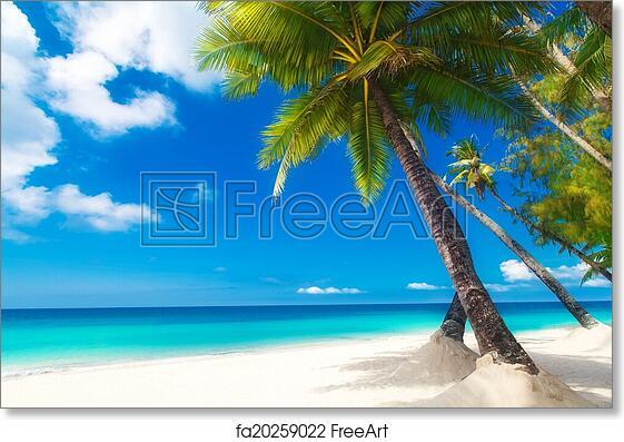 Free Art Print Of Dream Scene Beautiful Palm Tree Over White Sand Beach Summer N