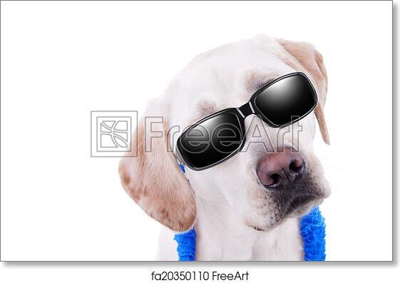 Free art print of Sunglasses Dog Vacation