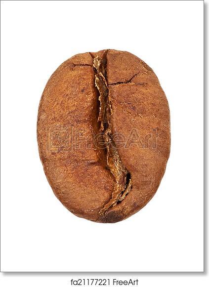 Free Art Print Of Single Coffee Bean Close Up