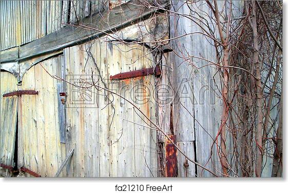 Free Art Print Of Old Barn Door