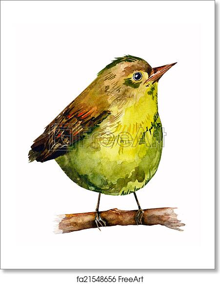 Free Art Print Of Watercolor Drawing Of Bird