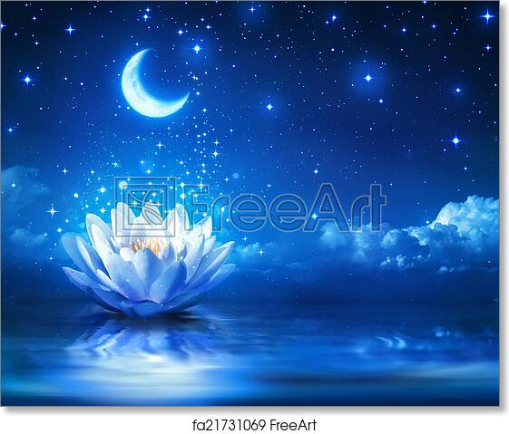 Free art print of Waterlily and moon in starry night