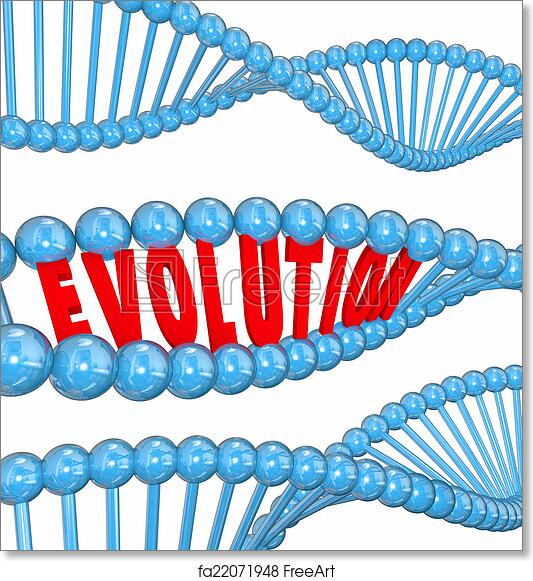 Free Art Print Of Evolution Word Letters Dna Strand Family