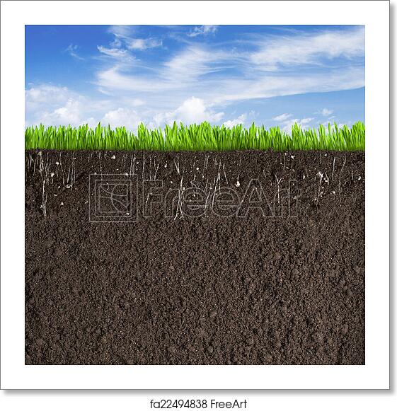 Free Art Print Of Soil Or Dirt Section With Grass Under