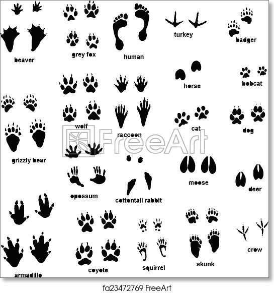 photo regarding Free Printable Animal Tracks identified as Totally free artwork print of Animal music