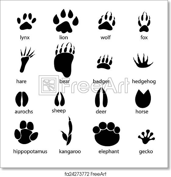 picture about Free Printable Animal Tracks named No cost artwork print of Preset of substitute animal tunes