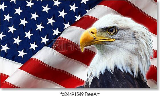 Free Art Print Of North American Bald Eagle On American Flag