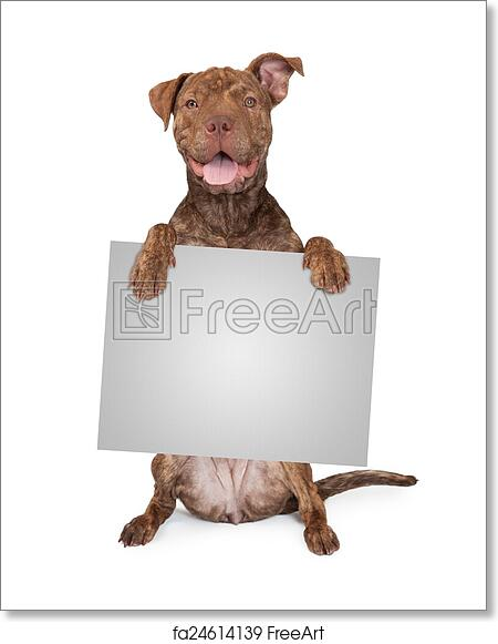 Pit Bull terrier eating picture dog art  4x6  GLOSSY PRINT