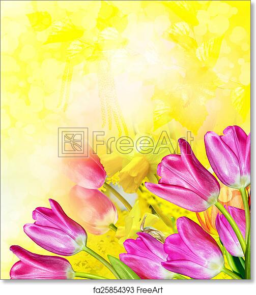 Free art print of pink and yellow flowers tulips and daffodils free art print of pink and yellow flowers tulips and daffodils freeart fa25854393 mightylinksfo